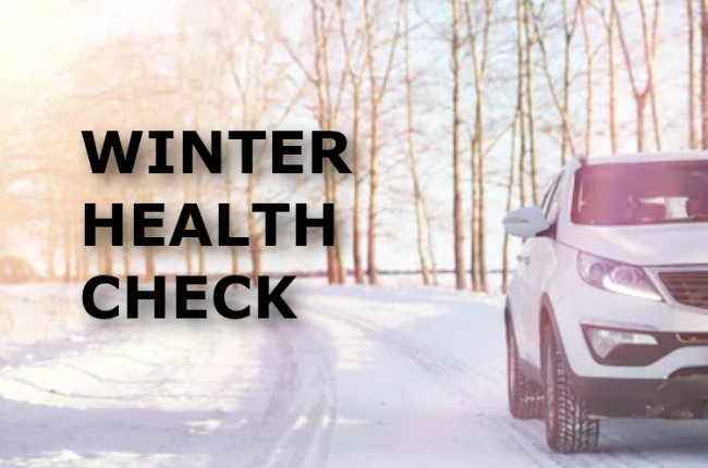 Winter Health Check2